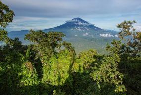 Mt. Batur (yanardağ)