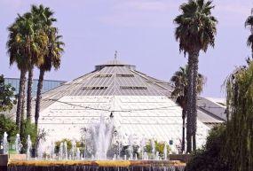 Phoenix Floral Park