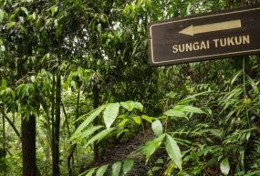 Penang Milli Parkı