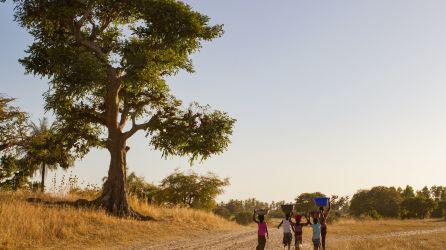 Senegal Turları