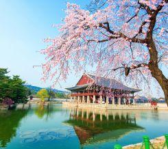 Kore Japonya Turları