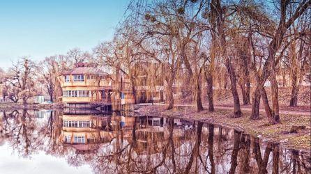 Rivne Turları