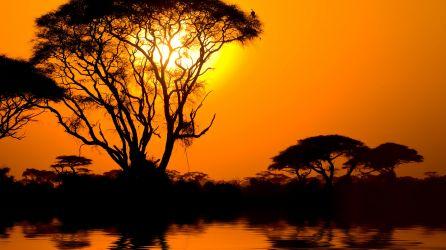 Lake Nakuru Turları
